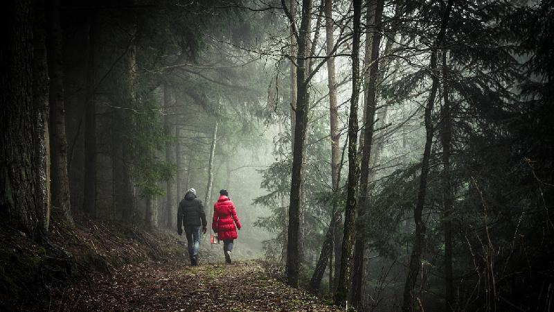 8 redenen om te gaan wandelen